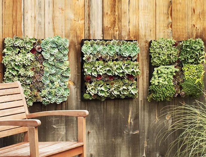 15 originele schutting idee n voor in je tuin - Idee van allee tuin ...